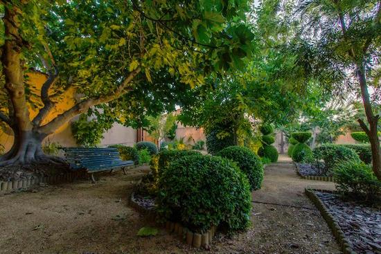 finca-villa-Juan-jarden